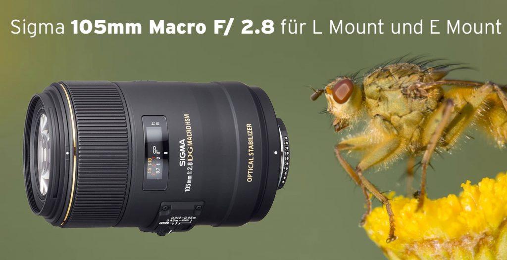 Sigma 105mm Macro F/ 2.8 für L Mount und E Mount